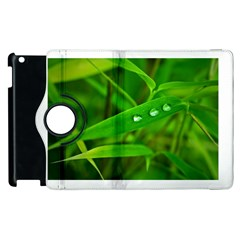 Bamboo Leaf With Drops Apple iPad 2 Flip 360 Case