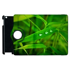 Bamboo Leaf With Drops Apple iPad 3/4 Flip 360 Case