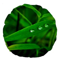 Bamboo Leaf With Drops 18  Premium Round Cushion