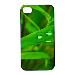 Bamboo Leaf With Drops Apple iPhone 4/4S Hardshell Case with Stand