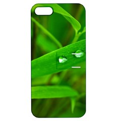 Bamboo Leaf With Drops Apple Iphone 5 Hardshell Case With Stand