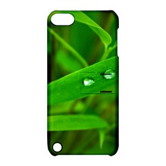 Bamboo Leaf With Drops Apple iPod Touch 5 Hardshell Case with Stand