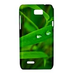 Bamboo Leaf With Drops Motorola XT788 Hardshell Case