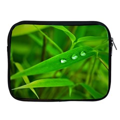 Bamboo Leaf With Drops Apple Ipad 2/3/4 Zipper Case