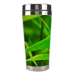 Bamboo Leaf With Drops Stainless Steel Travel Tumbler