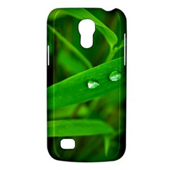 Bamboo Leaf With Drops Samsung Galaxy S4 Mini Hardshell Case