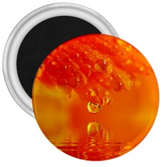 Waterdrops 3  Button Magnet