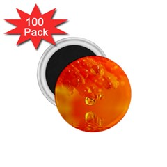 Waterdrops 1.75  Button Magnet (100 pack)