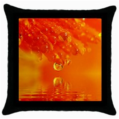 Waterdrops Black Throw Pillow Case