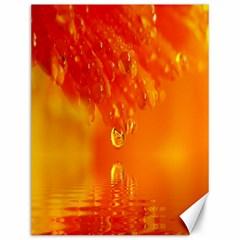 Waterdrops Canvas 12  x 16  (Unframed)