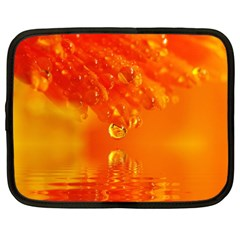 Waterdrops Netbook Case (large)