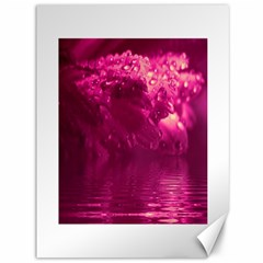 Waterdrops Canvas 36  x 48  (Unframed)