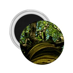 Tree 2.25  Button Magnet