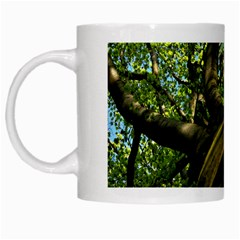 Tree White Coffee Mug