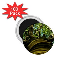Tree 1.75  Button Magnet (100 pack)
