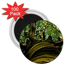 Tree 2.25  Button Magnet (100 pack)