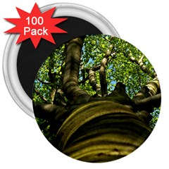 Tree 3  Button Magnet (100 pack)