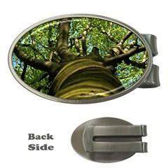 Tree Money Clip (Oval)