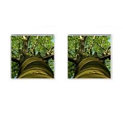 Tree Cufflinks (Square)