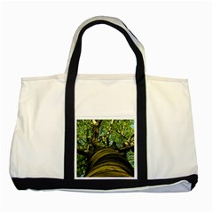 Tree Two Toned Tote Bag