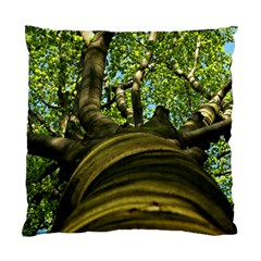 Tree Cushion Case (single Sided)