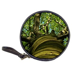 Tree Cd Wallet