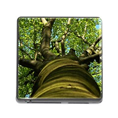 Tree Memory Card Reader with Storage (Square)
