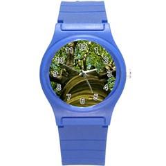 Tree Plastic Sport Watch (small)