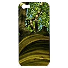Tree Apple iPhone 5 Hardshell Case