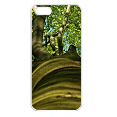 Tree Apple iPhone 5 Seamless Case (White)
