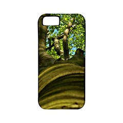 Tree Apple Iphone 5 Classic Hardshell Case (pc+silicone)