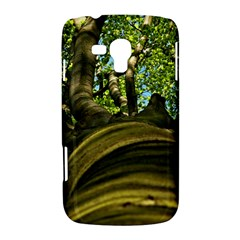 Tree Samsung Galaxy Duos I8262 Hardshell Case
