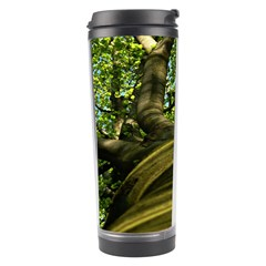Tree Travel Tumbler