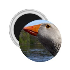 Geese 2.25  Button Magnet