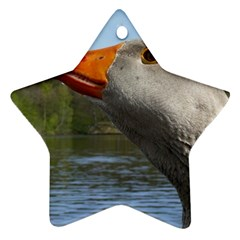 Geese Star Ornament