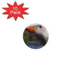 Geese 1  Mini Button Magnet (10 Pack)