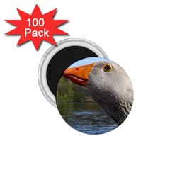 Geese 1.75  Button Magnet (100 pack)