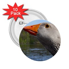 Geese 2.25  Button (10 pack)