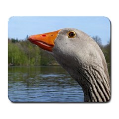 Geese Large Mouse Pad (Rectangle)