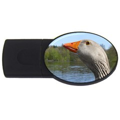 Geese 2GB USB Flash Drive (Oval)