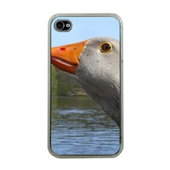 Geese Apple iPhone 4 Case (Clear)