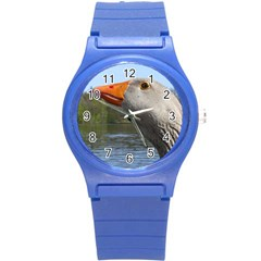 Geese Plastic Sport Watch (Small)