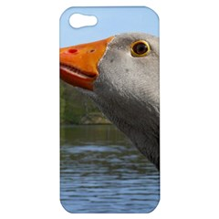 Geese Apple iPhone 5 Hardshell Case