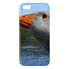 Geese iPhone 5 Premium Hardshell Case