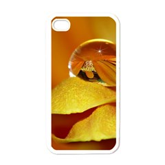 Drops Apple iPhone 4 Case (White)