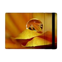 Drops Apple iPad Mini Flip Case