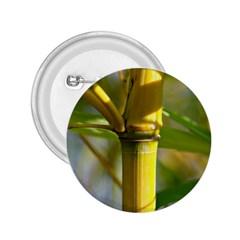 Bamboo 2 25  Button