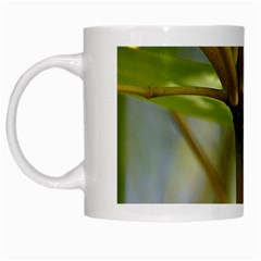 Bamboo White Coffee Mug