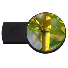 Bamboo 2GB USB Flash Drive (Round)