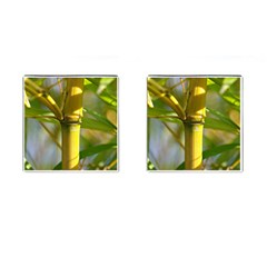 Bamboo Cufflinks (square)